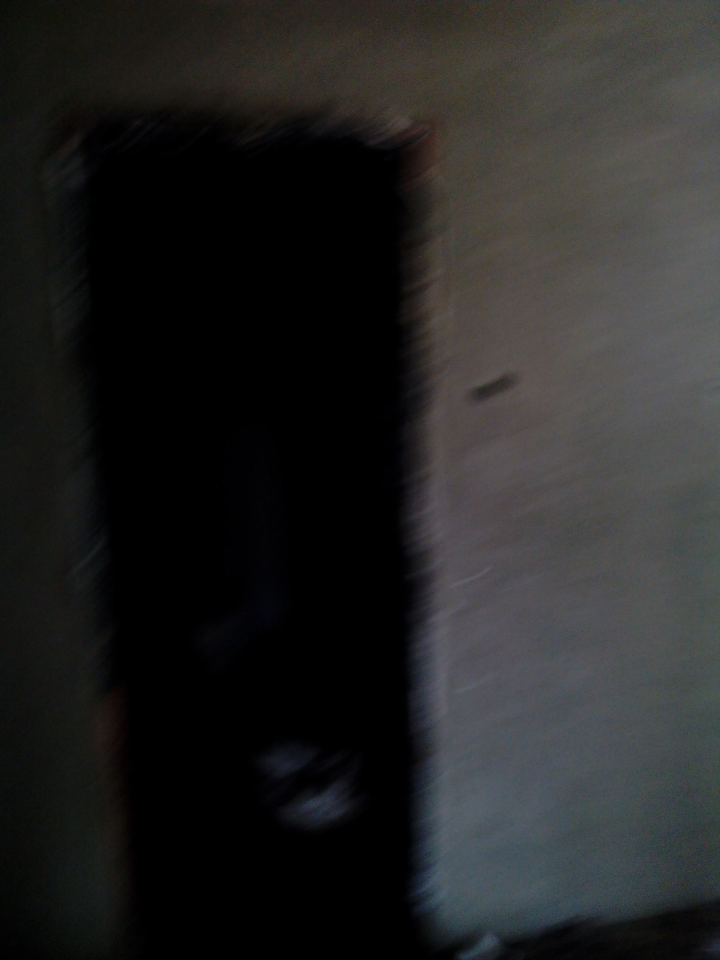IMG_20131108_112933